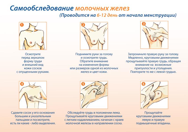 Как обследовать молочные железы