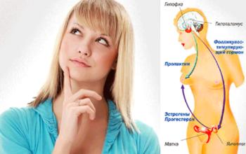 Происхождение гормонов