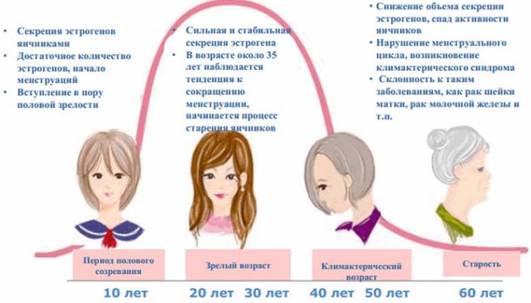 Уровень эстрогена по возрастам
